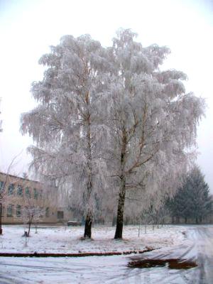 Зима однако :)))